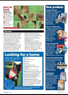 Your Dog - June 2017