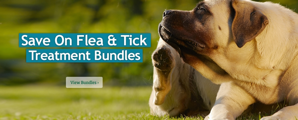 Flea & Tick Treatment Bundles