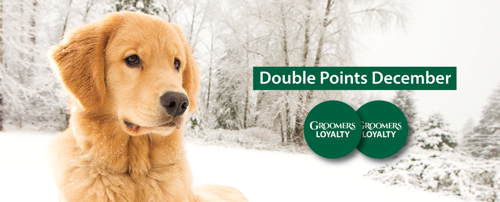 Double Points December!