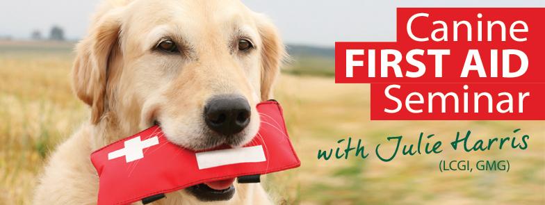 Canine First Aid Seminar