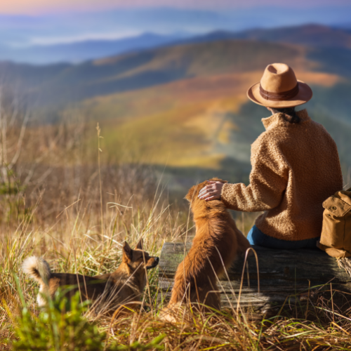 Woman with dogs looking out to the hills