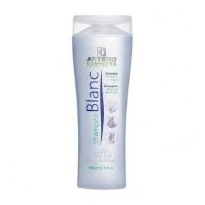 Artero Blanc Shampoo - NEW