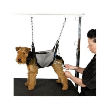 Dog Nail Clipping Sling Www Picswe Com