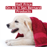 HALF PRICE Iv San Bernard Products