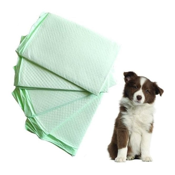 Groomers Disposable Cage Pads/ Puppy Pads - 50 Pack