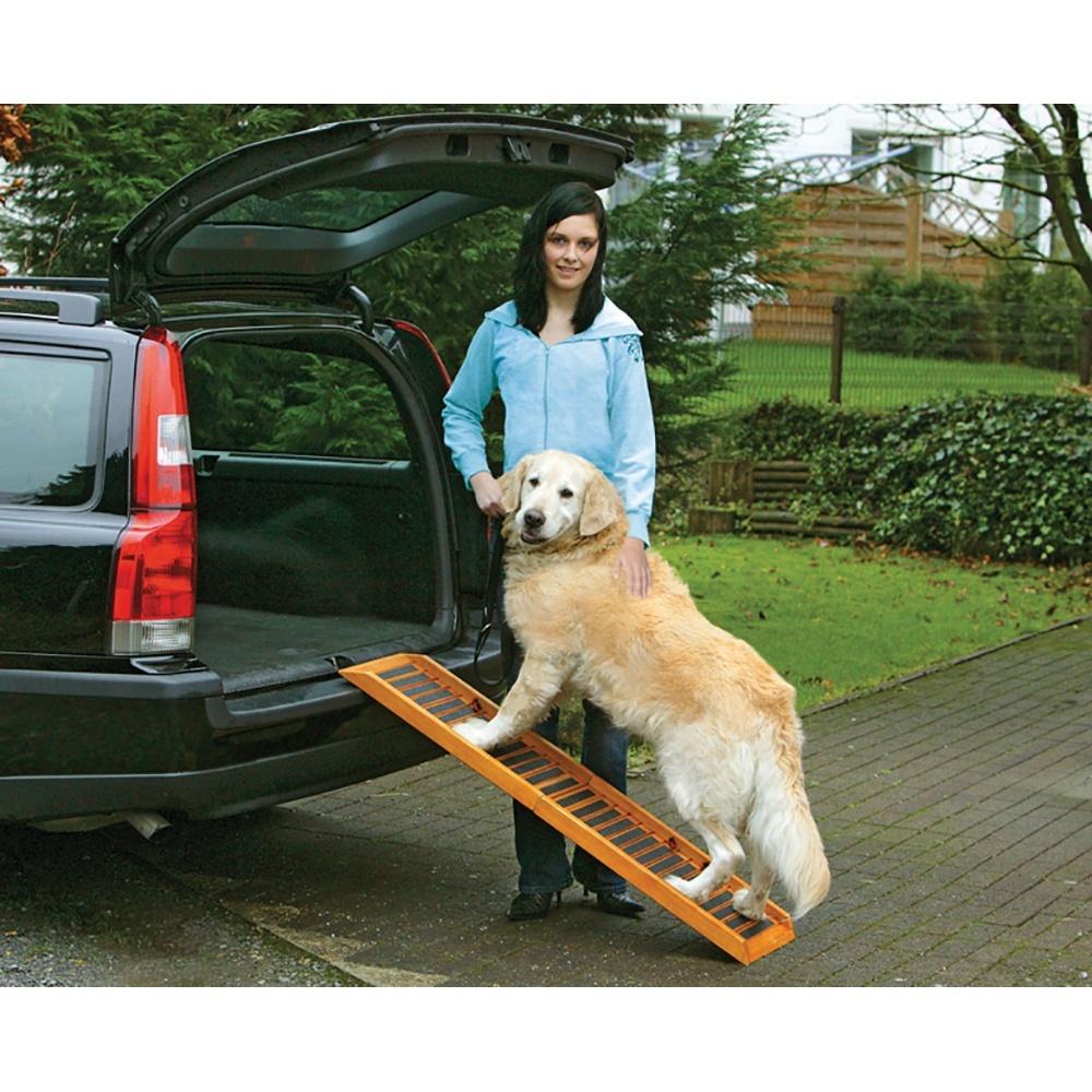 Best Folding Dog Ramp