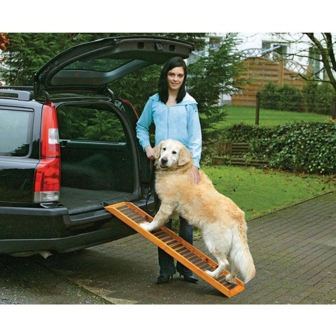 Karlie Folding Dog Ramp