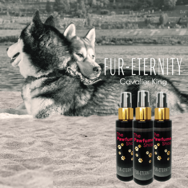Fur-eternity Fragrance Spray