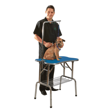 Groomers Bone Shaped Grooming Table - Blue
