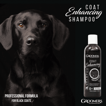 Groomers Coat Enhancing Shampoo for Black Coats 250ml
