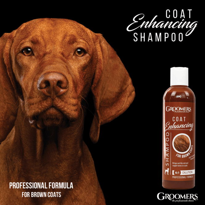 Groomers Coat Enhancing Shampoo for Brown & Copper Coats 250ml