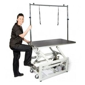 Groomers Titan Electric Table