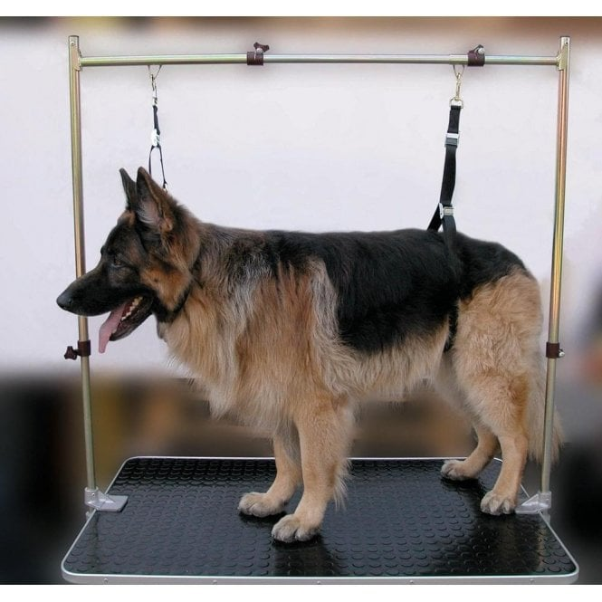 How To Make Dog Grooming Table