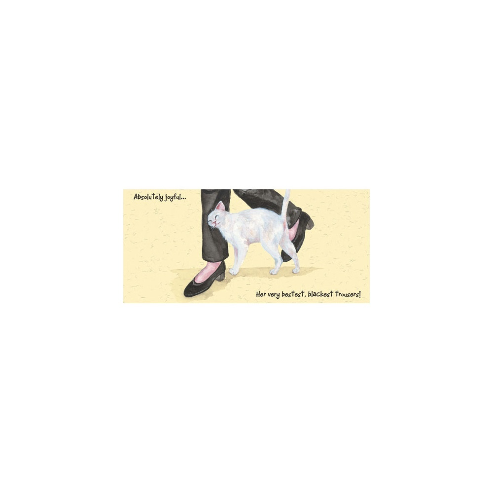 Magnificent Moggies Greeting Card  Black Trousers