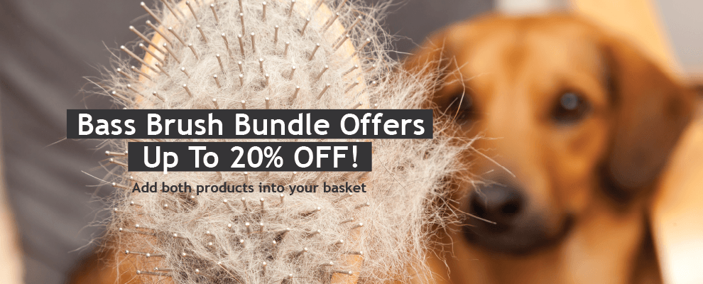 Bass Brush Bundle Offers - Up To 20% OFF!