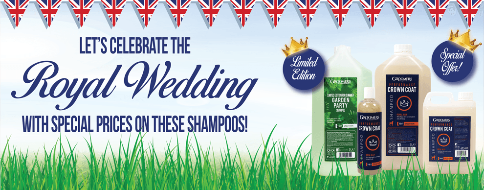 Royal Wedding Special Offer