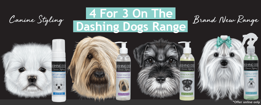 4 For 3 On Dashing Dogs Canine Styling