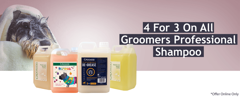 4 For 3 On Groomers Professional Shampoo