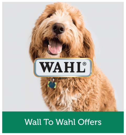 Wall To Wahl Offers