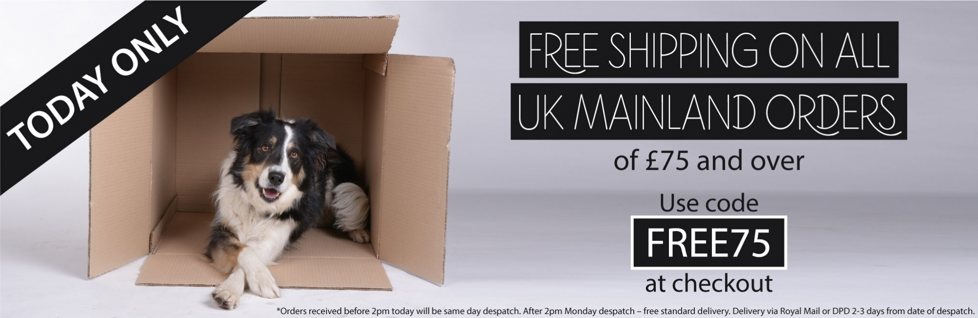 FREE DELIVERY - TODAY ONLY