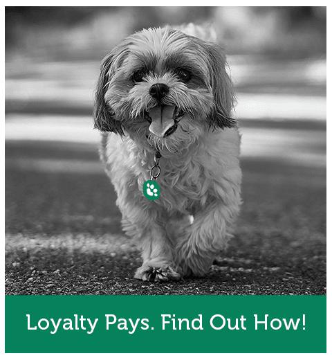 Pro Treats Loyalty