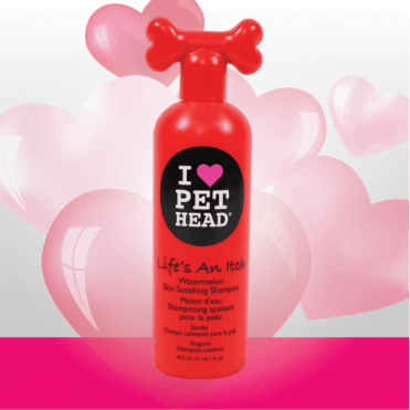 Pet Head Life's An Itch Shampoo (354ml)