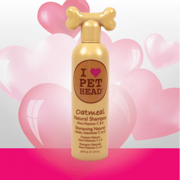 Pet Head Oatmeal Shampoo (354ml)