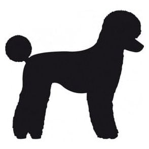 Poodle Salon Sticker