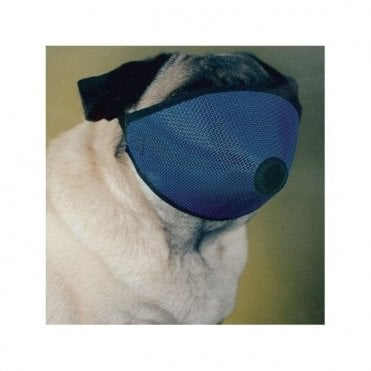 Short Nose Dog Muzzle