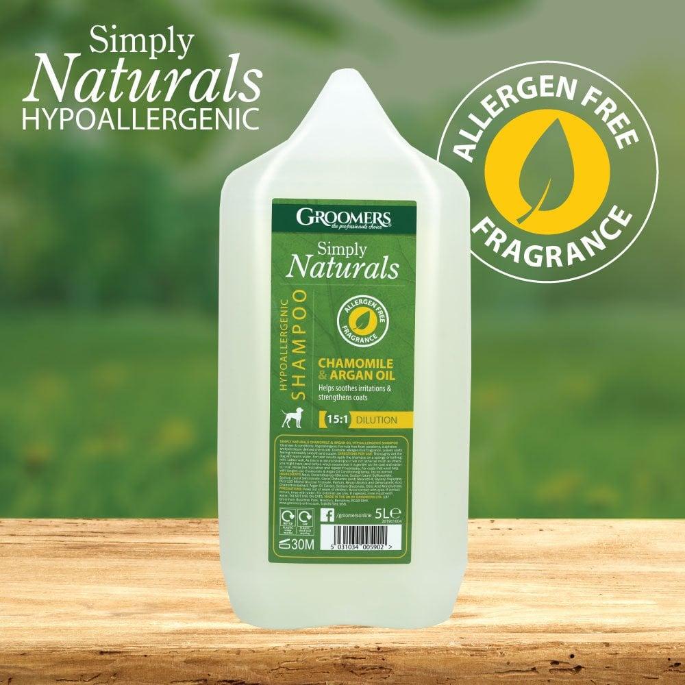 Roman Chamomile 100ml Essential Oil - Le Shallon Pure and