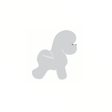 Small Bichon Sticker