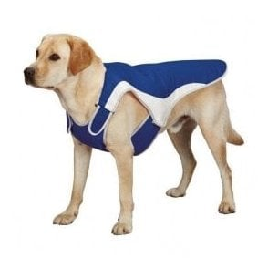 Stay Cool Dog Coat