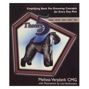 Theory of 5 - Melissa Verplank