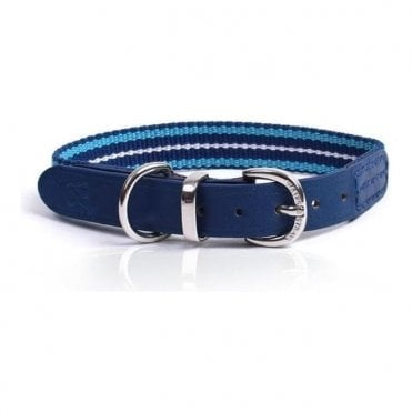 Waifs & Strays Albion Webbing Collar