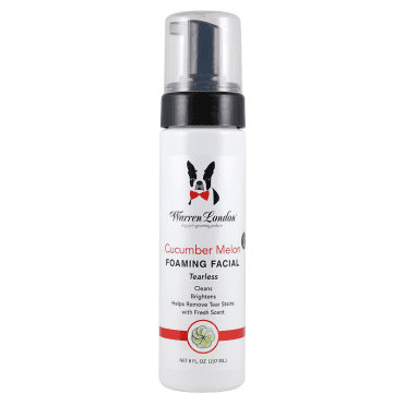 Warren London Cucumber Melon Foaming Facial